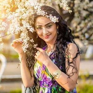 Download Hindi Songs MP3 Online  New Hindi Songs Free